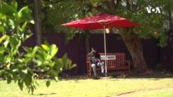 Zimbabwe Friendship Bench ...