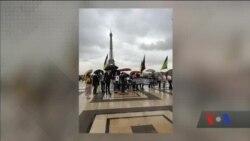 Акція на підтримку Олега Сенцова пройшла в Парижі. Відео