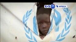 Manchetes Africanas 20 Dezembro 2018: Adiadas eleiçōes presidenciais no Congo Democrático