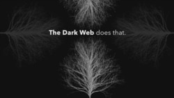 Explainer: Dark Web
