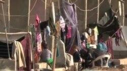 在敘利亞的維和人員被扣押