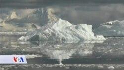 I Antarktik zagađen plastičnim otpadom