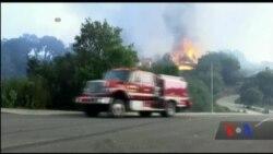 Лісові пожежі у Каліфорнії спустошують славнозвісні виноробні регіони