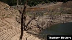 이상 고온으로 가뭄 현상이 나타나고 있는 미국 캘리포니아주