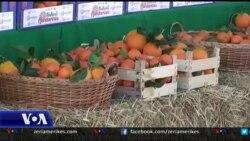 USAID mbështet programet për agrumet