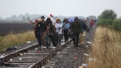 Tensions Rise as Hungary Prepares to Bar Illegal Migrants