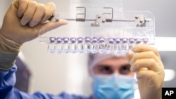 一名辉瑞技术人员在比利时的一处辉瑞公司的设施里检测新冠疫苗。(2021年3月)