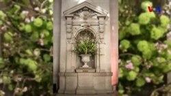"""Nyu-Yorkun """"Metropoliten İncəsənət Muzeyi""""nin gül əsərləri"""