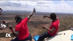Mbinu mpya ya kupanda miti yabuniwa Kenya