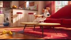 Cine: La vida secreta de tus mascotas