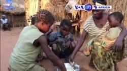 Manchetes Africanas 2 de Fevereiro 2015