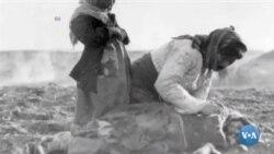 AQSh: 1915-yilda armanlar ommaviy qirilgani - genotsid