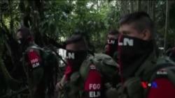 哥倫比亞停火協議10月1日生效