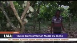 Vers la transformation locale du cacao au Ghana