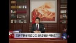 时事大家谈:习近平新年贺词,2015将反腐进行到底?