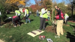 Foreign Diplomats Join Forces to Plant Trees in Washington