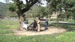 Millions Labor in Pakistan's Informal Economy
