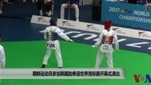 朝鲜运动员参加韩国跆拳道世界竞标赛开幕式演出