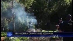 Shkodër: Operacioni antikanabis në ditën e 6