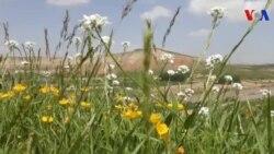 بهار در کندوز