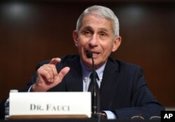 FILE - Dr. Anthony Fauci, director of the National Institute for Allergy and Infectious Diseases, testifies before a Senate Health, Education, Labor and Pensions Committee hearing on Capitol Hill in Washington, June 30, 2020.