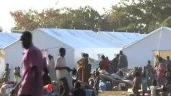 三名维和军人在南苏丹被打死