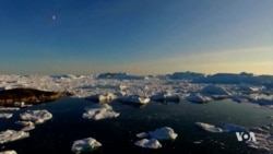 Greenland Continues to Lose its Ice Sheet