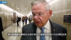 美国国会参议院外交委员会首席民主党议梅嫩德斯接受美国之音记者采访