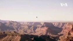 [미국을 만나다2] 애리조나의 경이로운 대자연