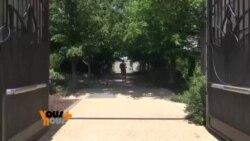 Vous et Nous : ballade au jardin botanique de Washington