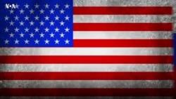 А как в Америке? Критика власти