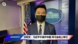 沙利文:习近平不离开中国 拜习会线上举行