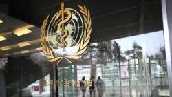 世衛組織建議設立全球基因編輯登記庫