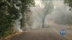 Через можливі пожежі у Каліфорнії анонсували відключення електроенергії. Відео