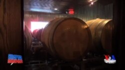 Kichik pivo zavodlarida - Craft brewery