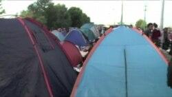 Migrantes cruzan a Croacia