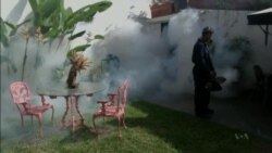 Zika Likely to Get Worse Before It Gets Better