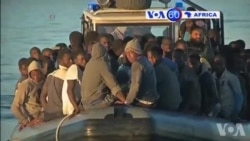 Manchetes Africanas 21 Novembro 2014