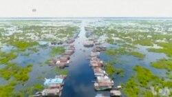 柬埔寨人主要蛋白质来源洞里萨湖鱼类濒危