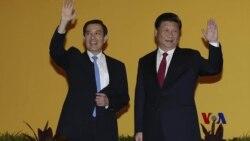 年终报道:美中台忐忑面对2016台湾选后变局