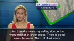 Thailand Moves to Change Program for Rice Farmers