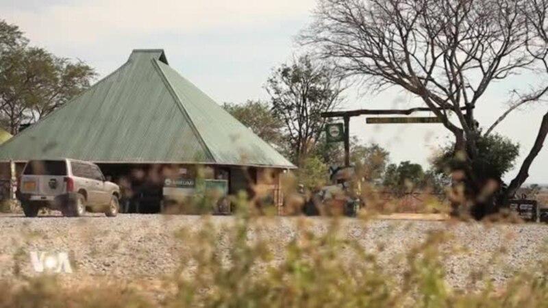 La Tanzanie va rouvrir ses frontières pour sauver l'industrie du tourisme