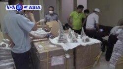 Việt Nam thu giữ 125kg sừng tê giác lậu