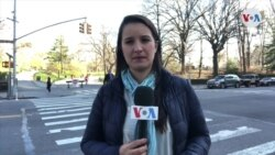 385 muertes por coronavirus en Nueva York