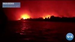 Brasil: Pantanal em Mato Grosso continua a arder