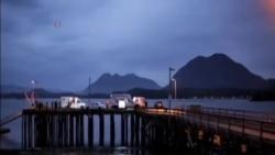 加拿大觀鯨船沿海沉沒 五人喪生