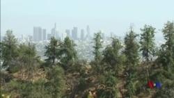 南加州6.4級地震後再有餘震