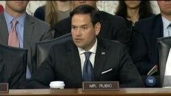 Сенатори вимагали у директорів розвідки США інформацію про наявність втручання президента у розслідування щодо Росії. Відео