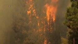 山火迫使舊金山進入緊急狀態