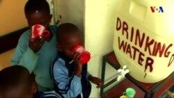 Alimlər su qıtlığına yardım edəcək yollar axtarır